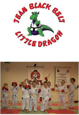 Little Dragons